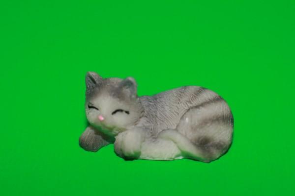 Miniatur Katze schlafend Kopf links