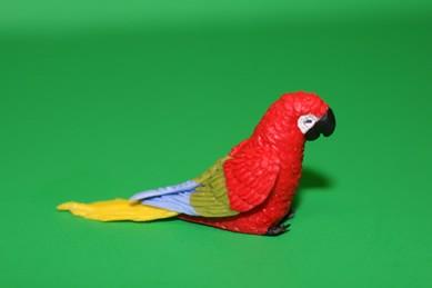 Papagei groß, rot/grün/blau/gelb