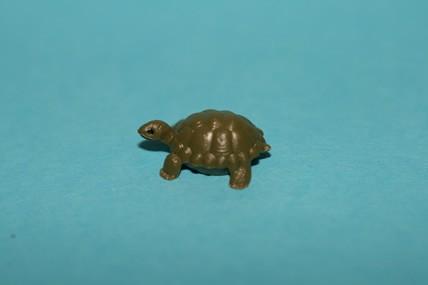 Schildkröte - 3 Stück