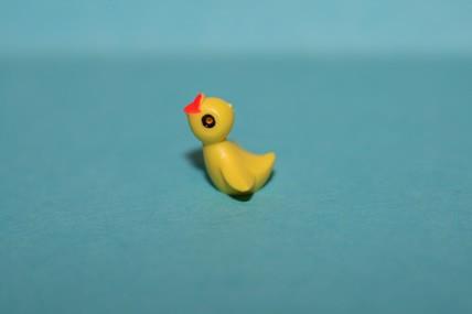 Mini-Vogelküken - 3 Stück