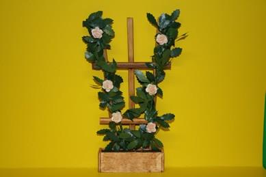 Holzspalier mit lachsfarbenen Rosen