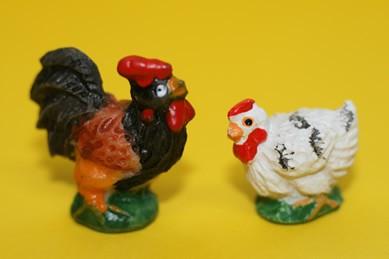 Hahn dunkel und Henne weiß