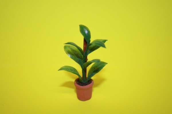Miniatur Grünpflanze 1:12