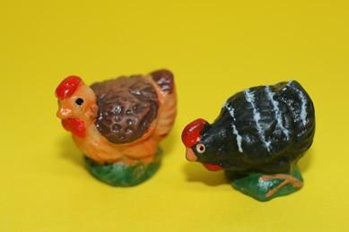 Henne schwarz und Henne hellbraun