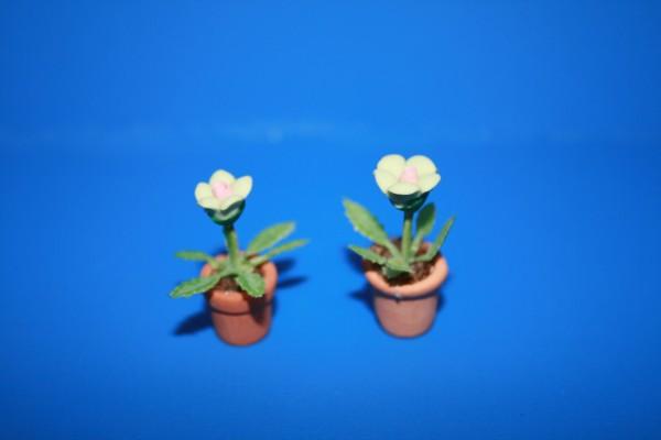 Miniatur Blumen weiß 1:12