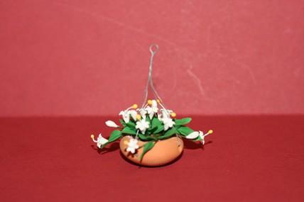 Hängeampel, Terracotta, weiße Blüten