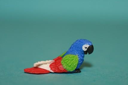 Papagei klein, blau/grün/rot
