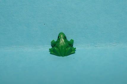 Mini-Frosch, Kunststoff - 3 Stück