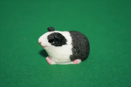 Meerschweinchen weiß/schwarz, div. Ausführungen