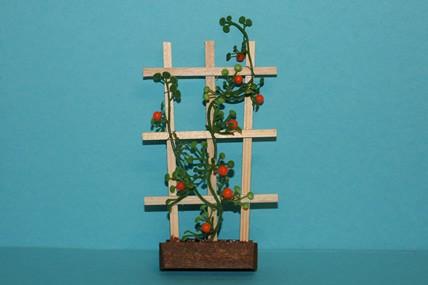 Holzspalier mit Mandarinenpflanzen