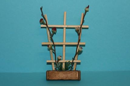 Holzspalier mit Obstranken-Blüten
