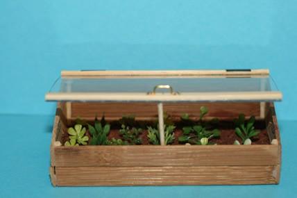Frühbeet-Kiste mit Pflanzen, 1:12