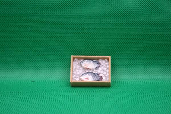 Kiste mit Fischen - 2 Stück (Nilbarsch)