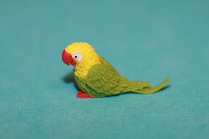 Papagei klein, grün/gelb