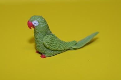Papagei groß, grün