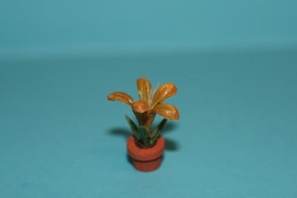 Topfpflanze gelb-braun