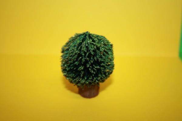 Buchsbaum rund