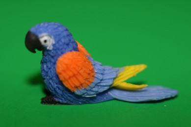 Papagei klein, blau/orange/gelb