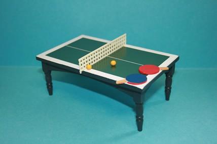 Tischtennis-Platte mit Zubehör