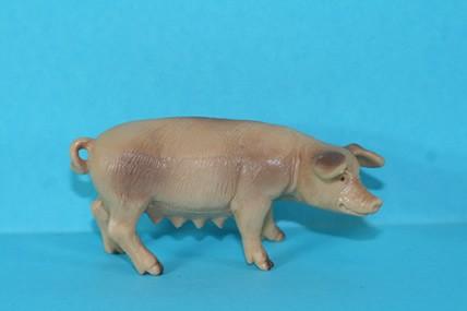 Mutterschwein