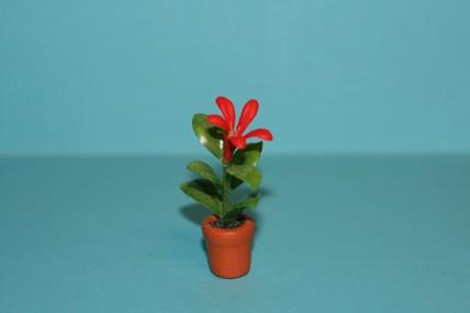 Topfpflanze rot