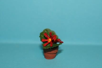 """Topfpflanze rot """"Wilder Weihnachtsstern"""""""