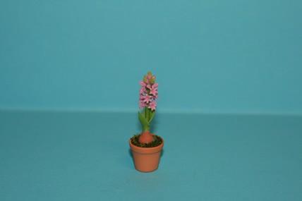 Hyazinthe im Topf, rosa