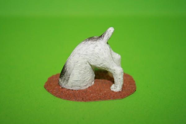 Hund - gräbt in der Erde