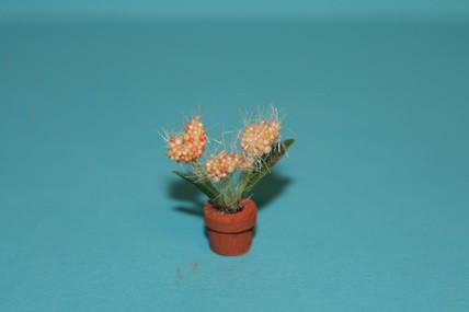 """Topfpflanze """"haarig"""", gelb/orange"""