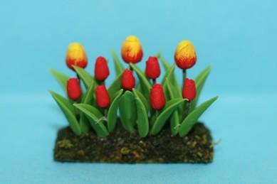 Blumenbeet Tulpen, rot/rot-gelb