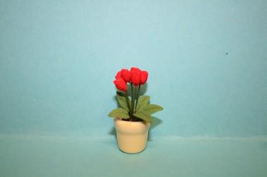 Tulpen rot, in gelbem Topf